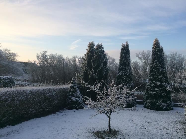 Schneebild2